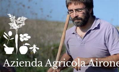 Azienda Agricola Airone