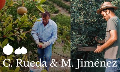 C. Rueda & M. Jiménez