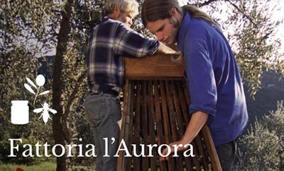 Fattoria l'Aurora