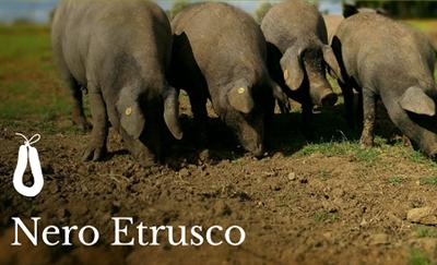 Nero Etrusco