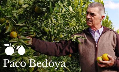Paco Bedoya