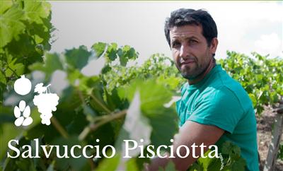 Salvuccio Pisciotta