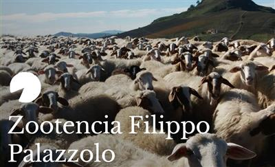 Zootencia Filippo Palazzolo